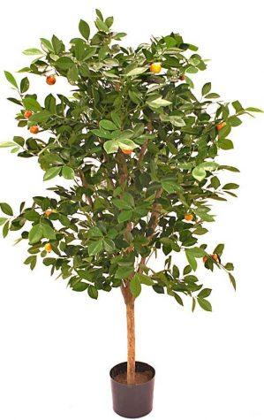 Apelsinträd, konstgjort träd-0