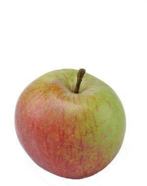 Äpple, höst, konstgjord frukt-0