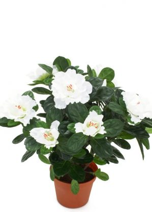 Azalea, vit, konstgjord blomma-0