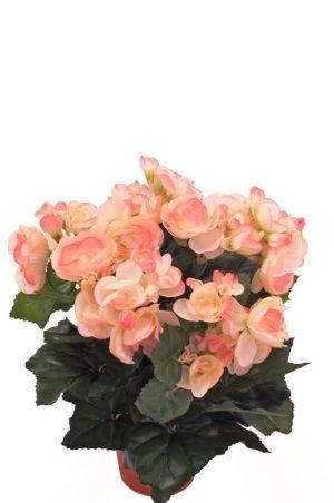 Begonia, ljus rosa, konstgjord blomma-0