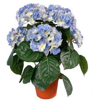 Hortensia, blå, konstgjord krukväxt-0