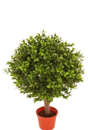 Buxbom på stam, konstgjord krukväxt-0