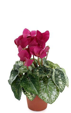 Cyklamen, lila, konstgjord blomma-0
