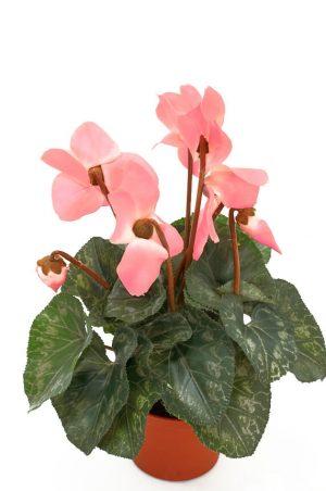 Cyklamen, rosa, konstgjord blomma-0