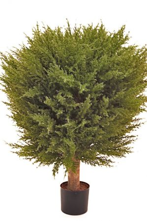 Cypress ball, konstgjord-0