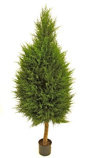 Cypress på stam, konstgjord-0