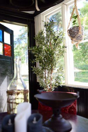 Olivträd, konstgjort-5919