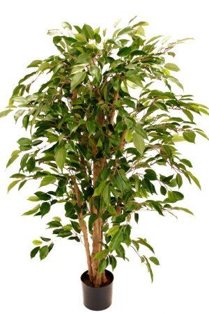 Ficus natasja, konstgjord-0