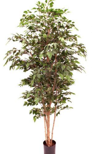 Ficus, konstgjord-0