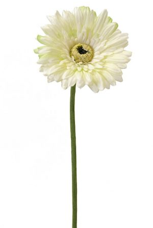 Gerbera, vit, lime, konstgjord blomma-0
