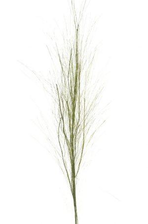 Gräs, konstgjort-0