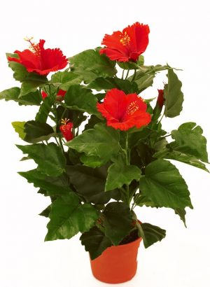 Hibiscus, röd, konstgjord blomma-0