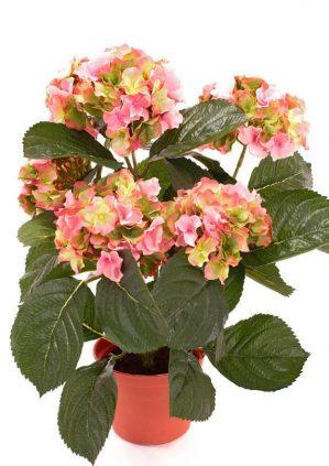Hortensia, rosa grön, konstgjord krukväxt-0