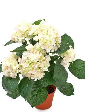 Hortensia, rosa vit, konstgjord krukväxt-0