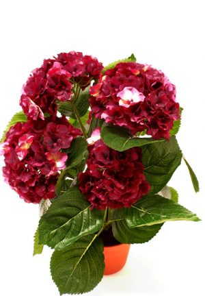 Hortensia, vinröd, konstgjord krukväxt-0