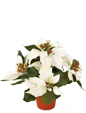 Julstjärna creme vit, konstgjord-0