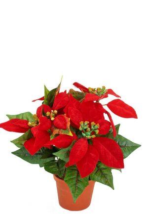 Julstjärna, röd, konstgjord-0