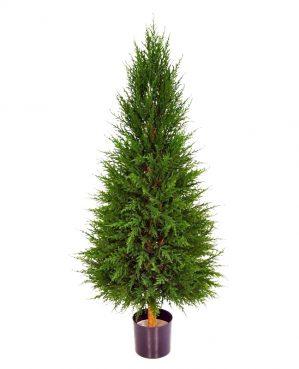 Cypress, konstgjord-0