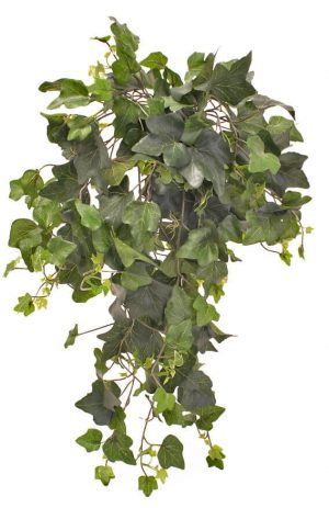 Murgröna bush, mellan, konstgjord-0