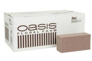 oasis-0
