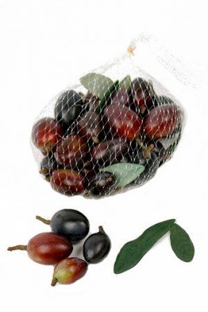 Oliver, vinröda, konstgjorda-0