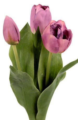 Tulpan 3-pack, lila, konstgjord blomma-0