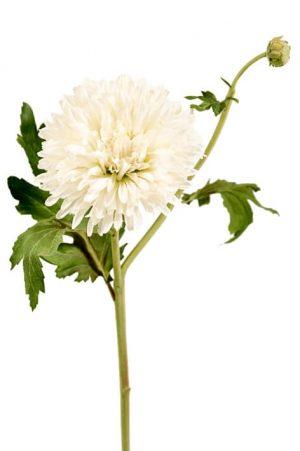 Chrysanthemum, creme, konstgjord blomma-0