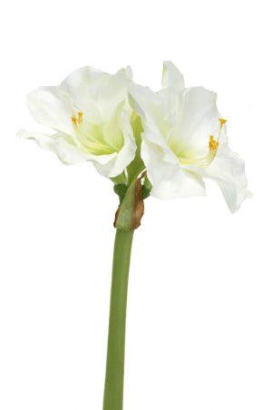 Amaryllis, vit, konstgjord blomma-0