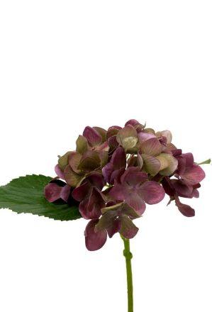 Hortensia, vinröd, konstgjord blomma-0