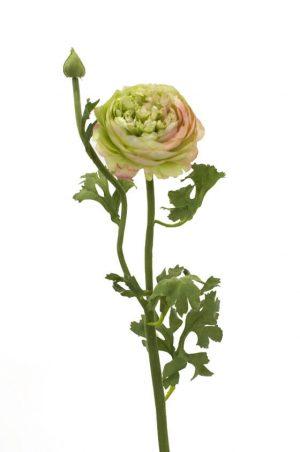Ranunkel, rosa lime, konstgjord blomma-0