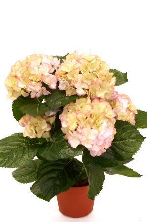Hortensia, rosa gul, konstgjord krukväxt-0