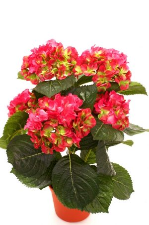 Hortensia, rosa lime, konstgjord krukväxt-0