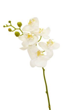Orkidéstängel, creme, konstgjord-0