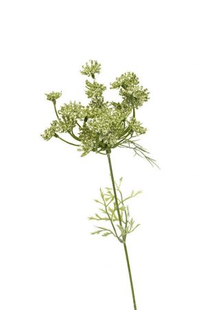 Trachelium, grön vit, konstgjord blomma-0