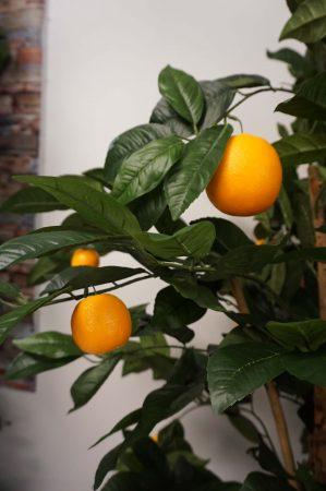 Apelsinträd, konstgjort träd-6416