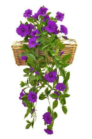 Petunia häng i kruka, blå, konstgjord-0