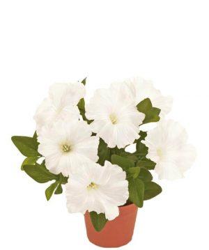 Petunia, vit, konstgjord blomma-0