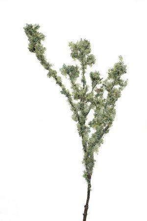 Mosskvist, grå grön, konstgjord-0