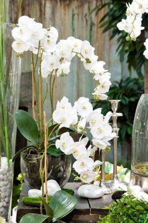 Orkidé i glaskruka, konstgjord-5007