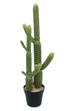 Kaktus, konstgjord-0