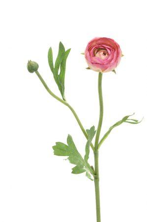 Ranunkel, gammalrosa, konstgjord blomma-0