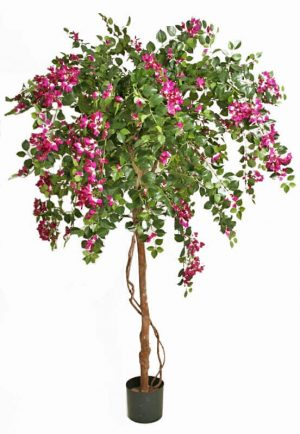 Bougainvillea, lila, konstgjort träd-0