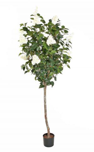 Syrénträd, vita blommor, konstgjort-0