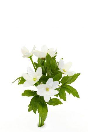 Vitsippa, konstgjord blomma-0