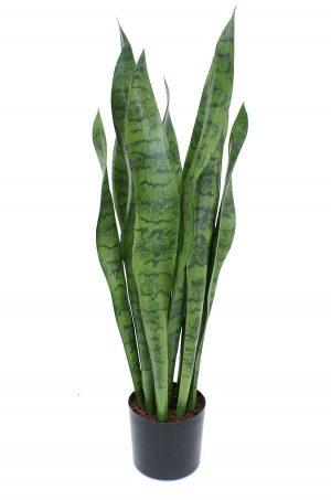 Svärmorstunga, konstgjord krukväxt-0