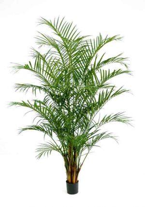 Areca palm, 230cm, konstgjord-0
