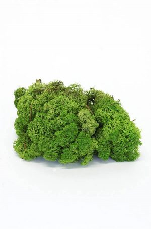 Mossa, mörkgrön, flamsäker-0