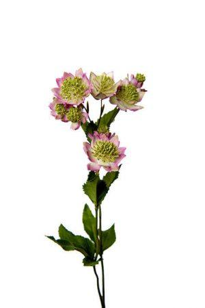 Stjärnflocka, lila vit, konstgjord blomma-0
