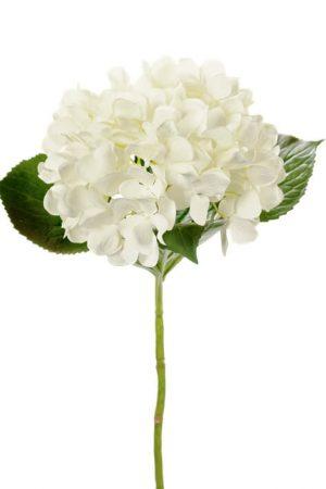 Hortensia, vit, konstgjord blomma-0
