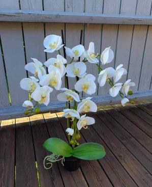 Orkidé i kruka, 3-stängel, vit, konstgjord-5225